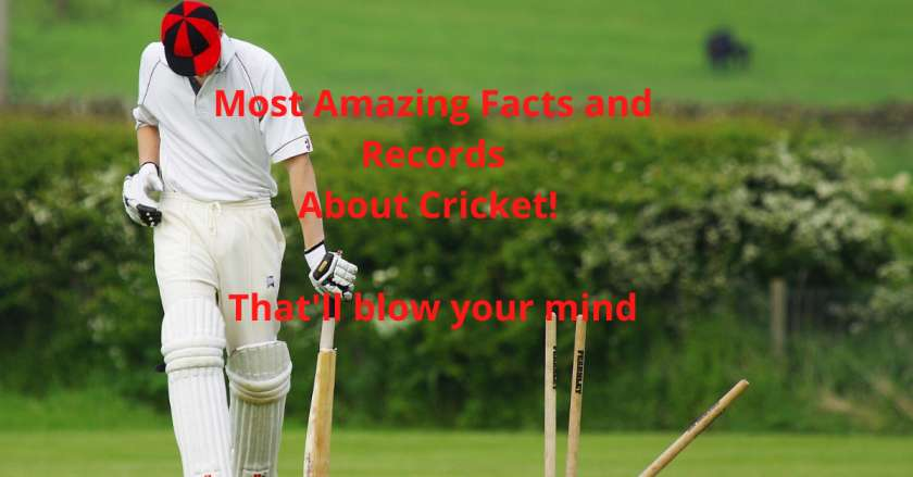 Most Amazing Facts About Cricket