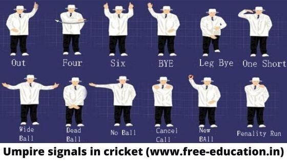 umpires signal size