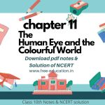 The Human Eye and the Colourful World